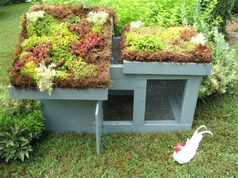 green roof chicken coop plans the poultry guide