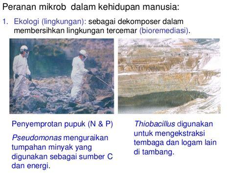 contoh bio remediasi kuliah 8 keragaman prok cend