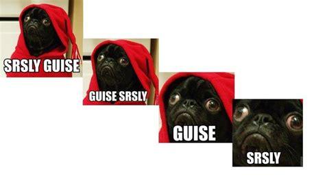 srsly guise pug gif image gallery srsly guise