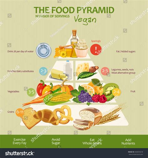 healthy fats list vegan food pyramid healthy vegan infographic stock vector