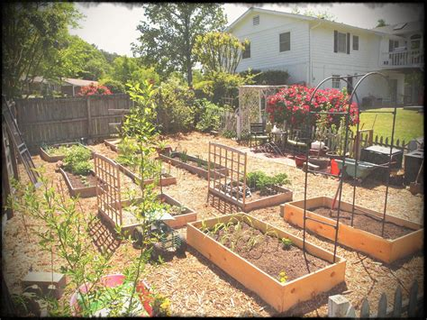 garden ideas for small spaces new vegetable garden ideas for small spaces creative maxx