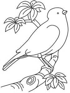 picturs to color pictures of birds to print az coloring pages