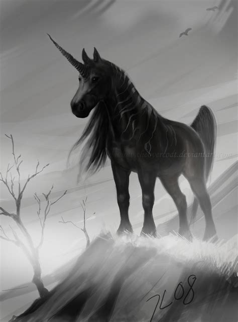 The Black Unicorn black unicorn by theovercoat on deviantart