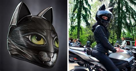 cat helmets from russia keep you cute and secure
