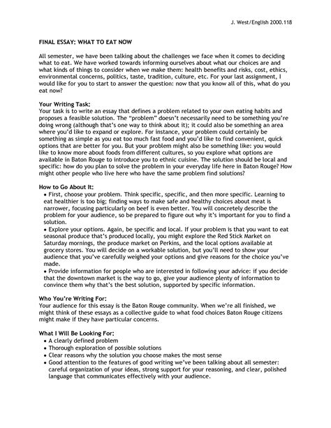writeplacer guide with sle essays sle college essays