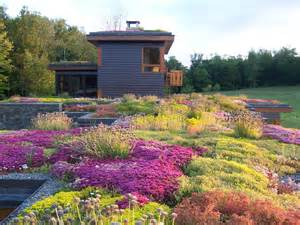 greenroofs com earth day photo contest