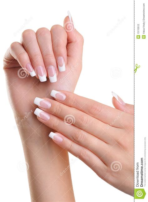 beautiful female hands with french manicure stock photography image 13110512