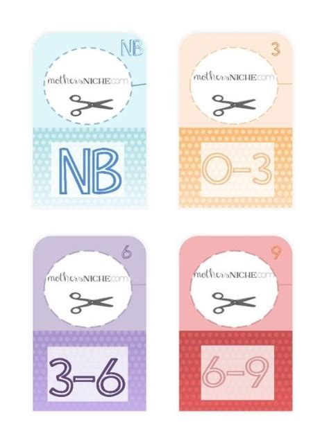 Free Printable Closet Dividers by 25 Best Ideas About Baby Closet Dividers On