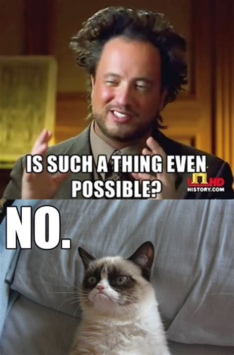 Grumpy Cat No Meme - no grumpy cat know your meme