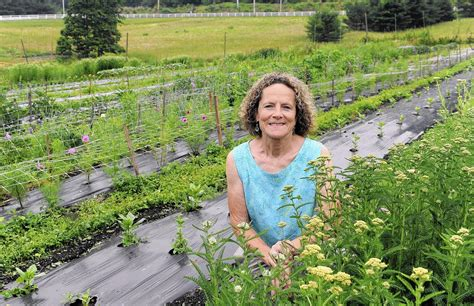 Talmar Gardens by Center At Cromwell Valley Park Offers Horticultural