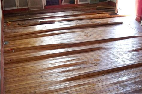 Recovering Hardwood Flooring After a Flood   Holz & Stein