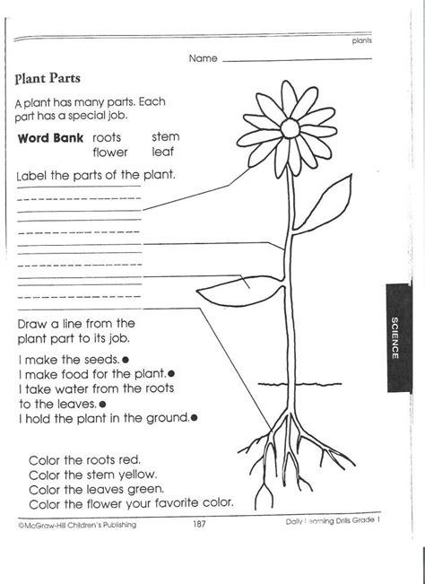 1st grade science worksheets picking apart plants