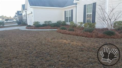 Landscape Supply Woodstock Ga Pine Straw Installed Free Dialfilecloud