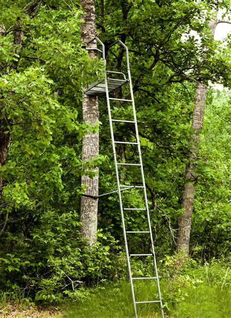 top tree stands for real trees reviews of the best tree stands in the usa