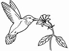 hummingbird coloring page hummingbird coloring pages bestofcoloring
