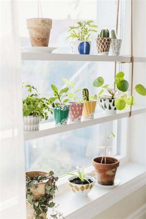 window plant shelves best 25 window shelves ideas on kitchen