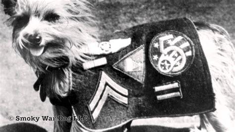 like war dogs beloved friend smoky the war wwii a tribute to smoky and william a wynne