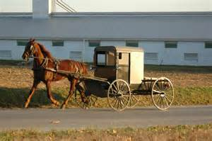 Resort Lancaster Pa Hotel lancaster pa united states amish country picture of