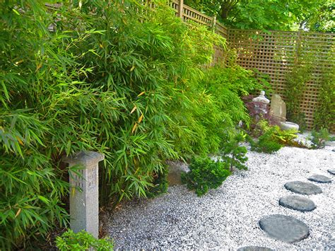 japanese garden plants ideas for your home margarite