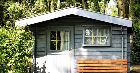 shed paints  spruce    review