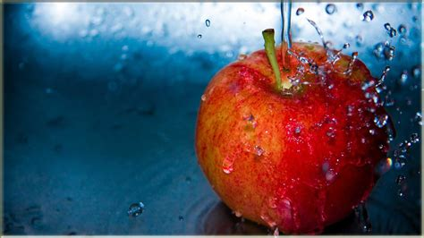 Buah Apel 15 wallpaper buah apel kualitas hd www buahaz