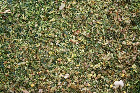 Jurnal Fermentasi Pakan Ternak Pdf pengawetan hijauan dengan cara silase untuk pakan ternak