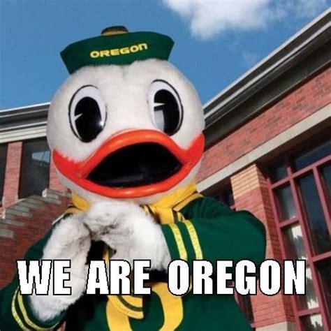 Oregon Ducks Meme - 330 best love my ducks images on pinterest