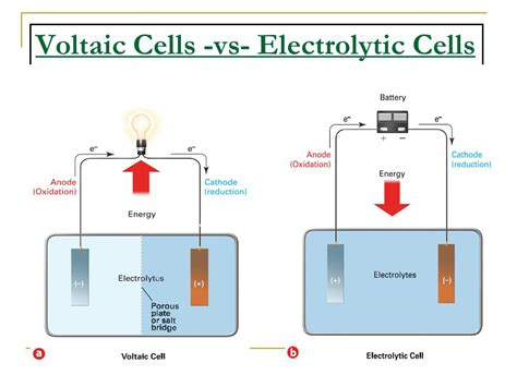 voltaic cell diagram complete the diagram of a voltaic cell gallery how to