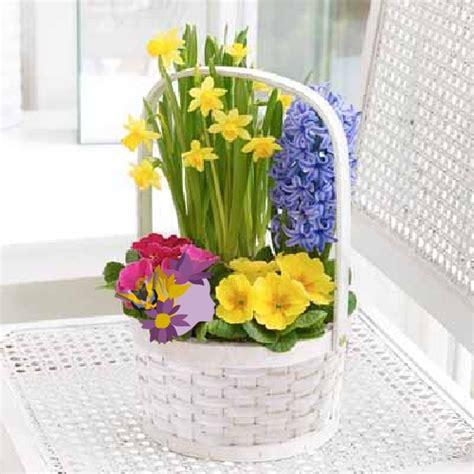 spedizione fiori in italia spedizione piante domicilio negozi consegna fiore