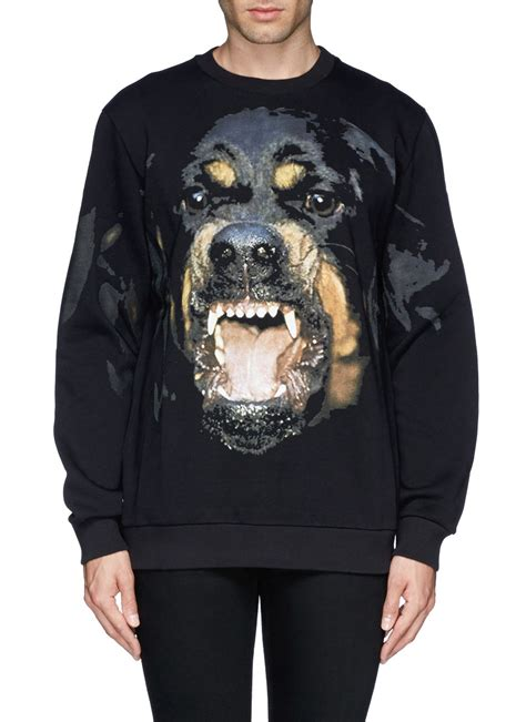 rottweiler hoodie givenchy rottweiler print sweatshirt in black for lyst