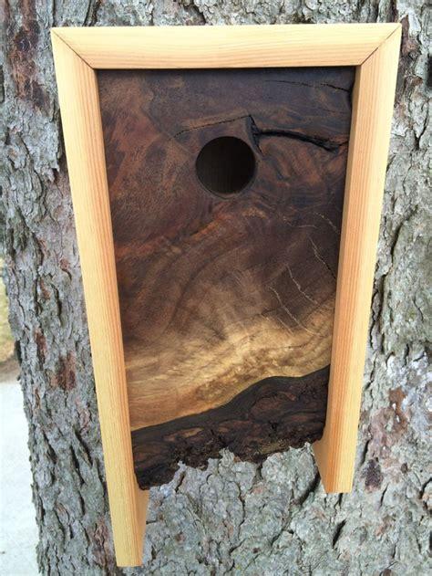 modern birdhouse  edge walnut  cedar
