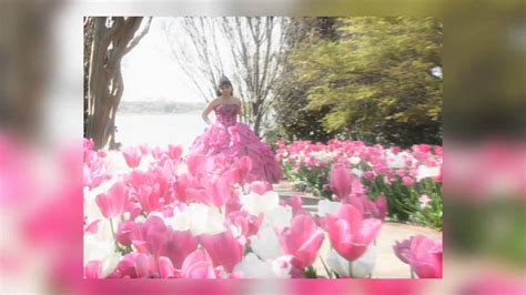 imagenes de paisajes para quinceañeras fondo para men 250 de dvd fiesta de quince a 241 os youtube