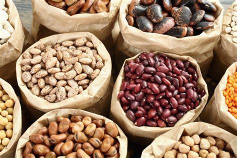 elenco alimenti ricchi di ferro 111 best alimenti propriet 224 e benefici alimenti brucia