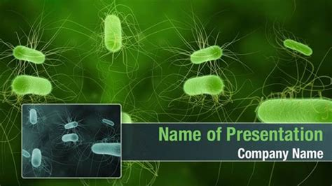 powerpoint themes bacteria bacterial infection powerpoint templates bacterial