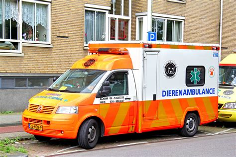 i want to a service i want to move to netherlands 187 lopa removals trusted european removals