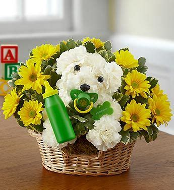 puppy flower arrangement 49 best images about new baby gifts ideas on new babies new baby