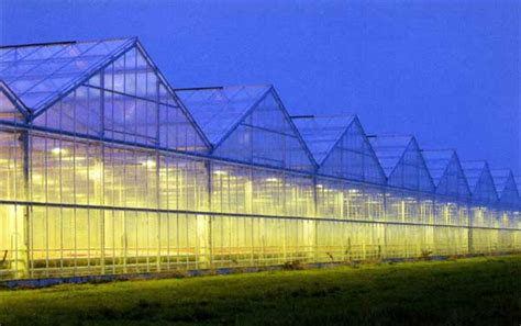Greenhouse Lighting Fixtures Crop Lighting Pl Lights Hortilux Lights