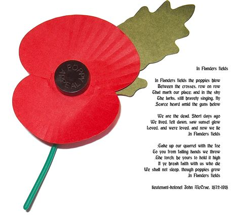 warmuseum remembrance day the poppy and