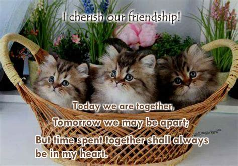 I Cherish Our Friendship. Free Best Friends eCards