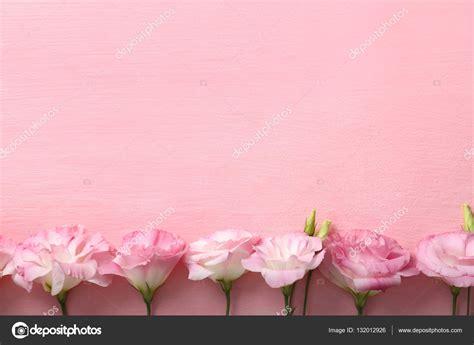 fiori cornici cornice di fiori freschi foto stock 169 belchonock 132012926