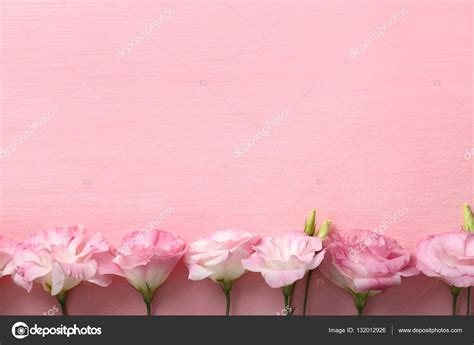 cornice di fiori cornice di fiori freschi foto stock 169 belchonock 132012926