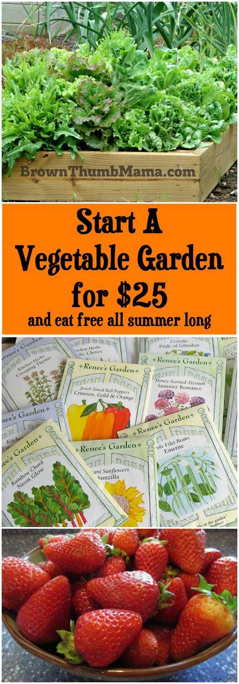 how to start a vegetable garden for beginners how to start a garden steps gardening for beginners best