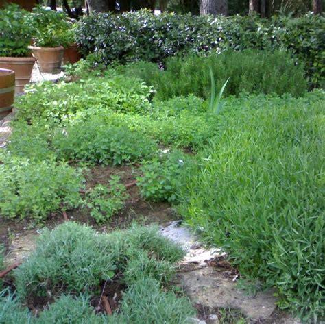Bicarbonate De Soude Et Jardin by Bicarbonate De Soude Au Jardin Maison Design Apsip