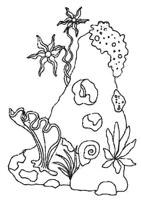 imagenes animales marinos para colorear menta m 225 s chocolate recursos y actividades para