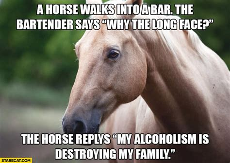 a horse walks into a horse walks into a bar the bartender says why the long face the horse reply s my alcoholism