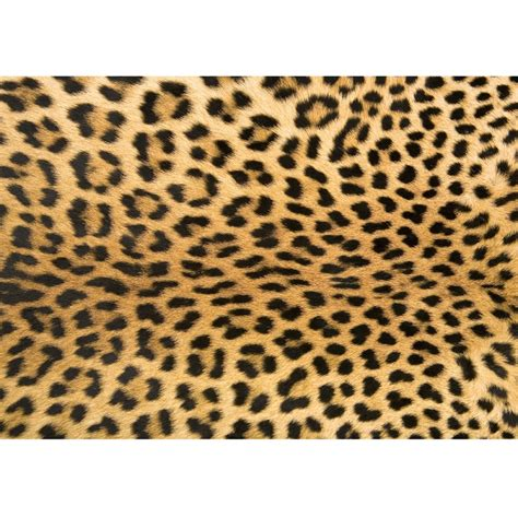 leopard print rug for college by foflor rugs free shipping