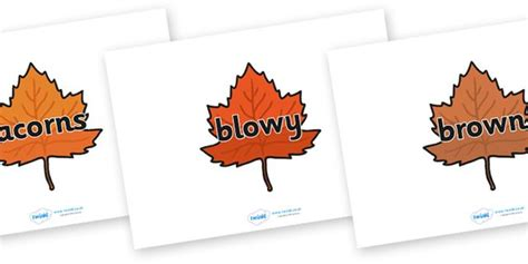 printable leaves twinkl the 98 best images about autumn fall resources on