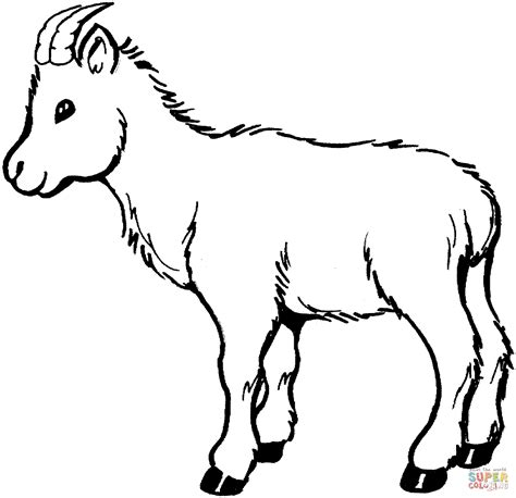 printable coloring pages goat coloring pages