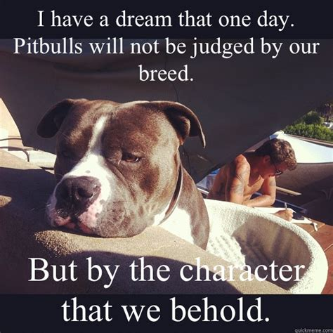 Pitbull Puppy Meme - i have a dream that one day pitbulls will not be judged