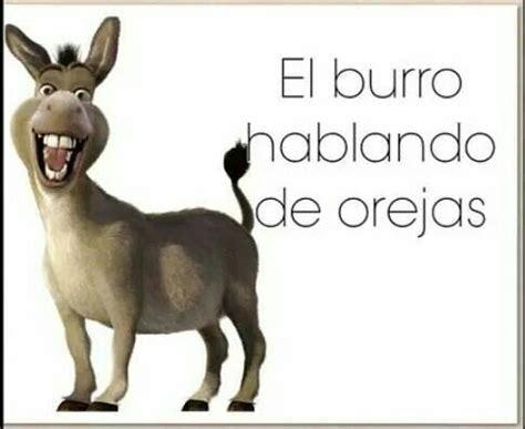 imagenes de amor chistosos del burro shrek el burro hablando de orejas burrito shrek dichos